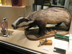 Badger book